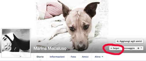 facebooksegui